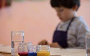 Discover the Rose Kindergarten