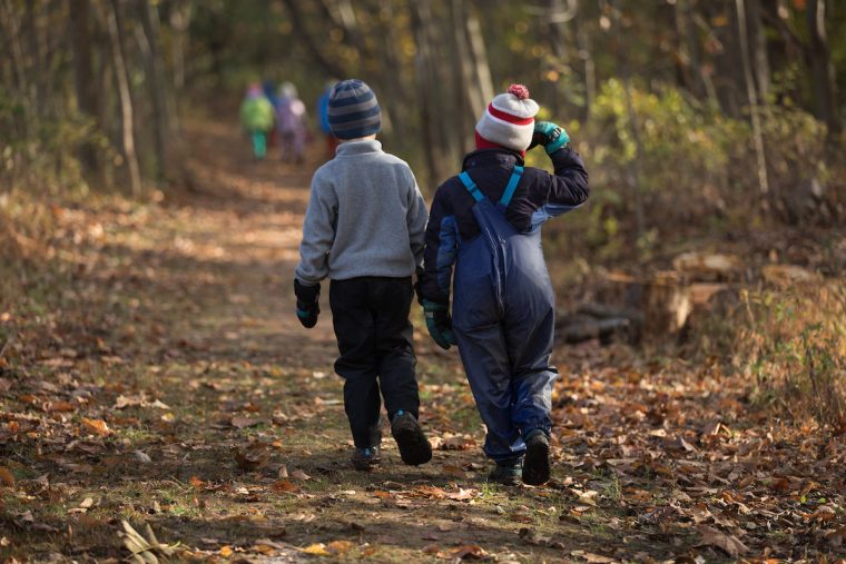 A Walk in the Woods with our Forest, Field and Farm Kindergarten Teacher