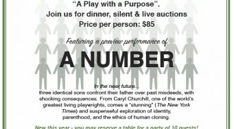 17th Annual A Play With A Purpose